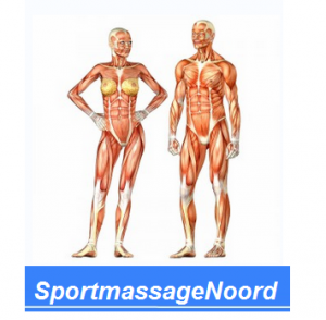 sportmassagenoord